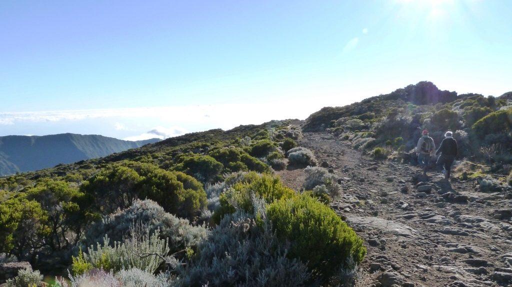 Sentier Piton de la Fournaise