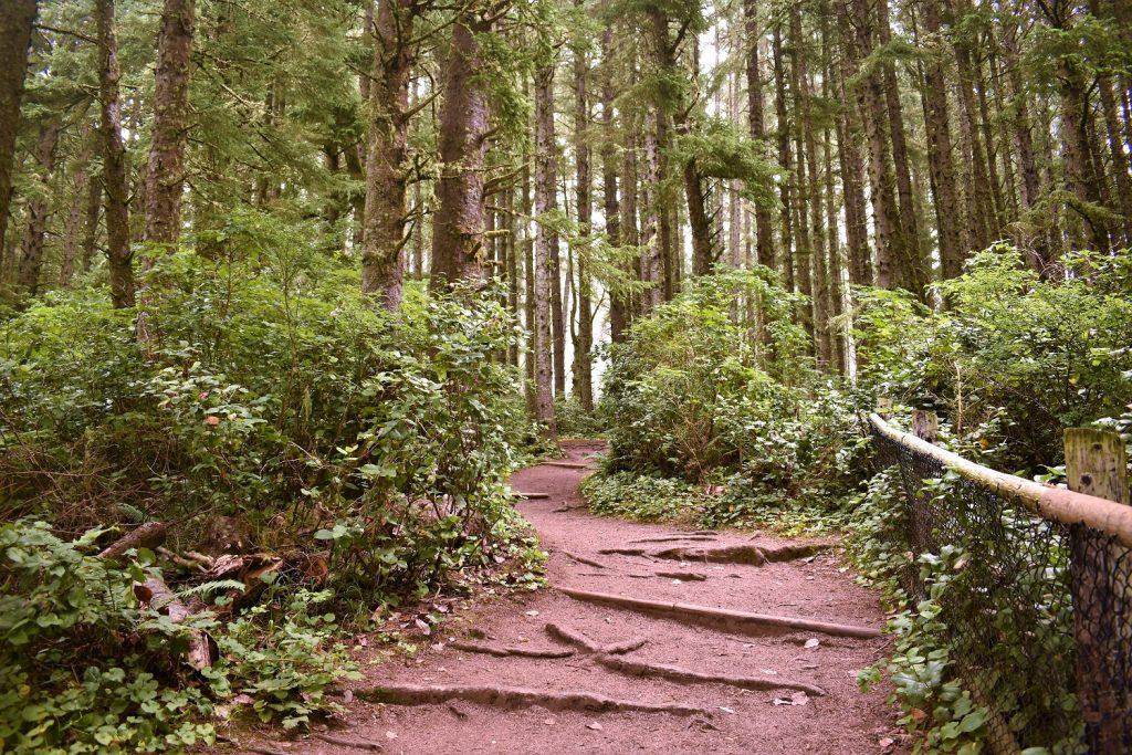 Cape Meares Oregon
