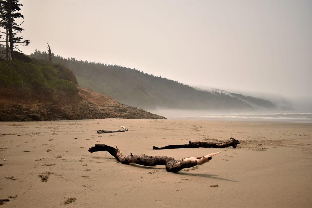 Cape Lookout Oregon