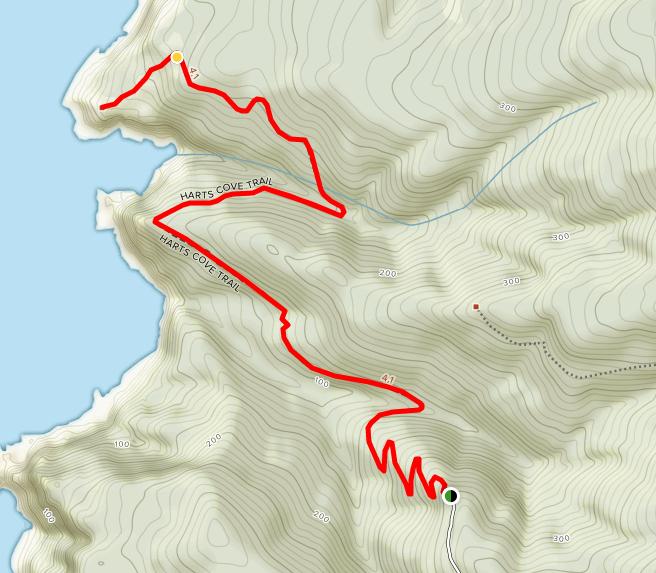 Hart's Cove Trail
