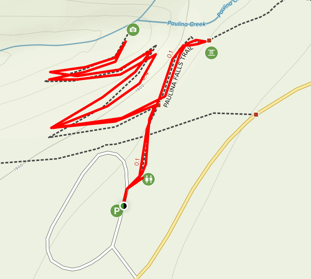 Paulina Falls trail