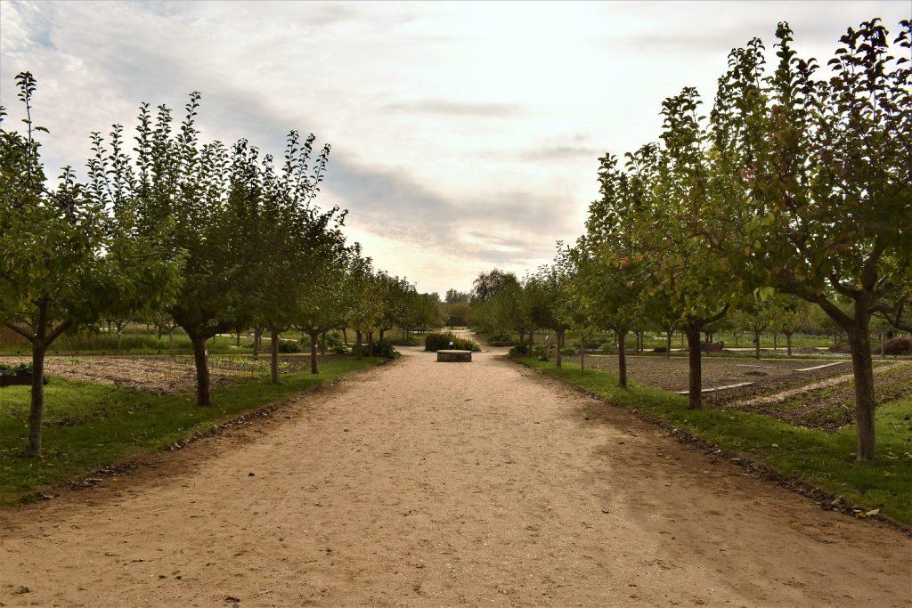 Jardins botaniques et fruitiers La Roche Guyon