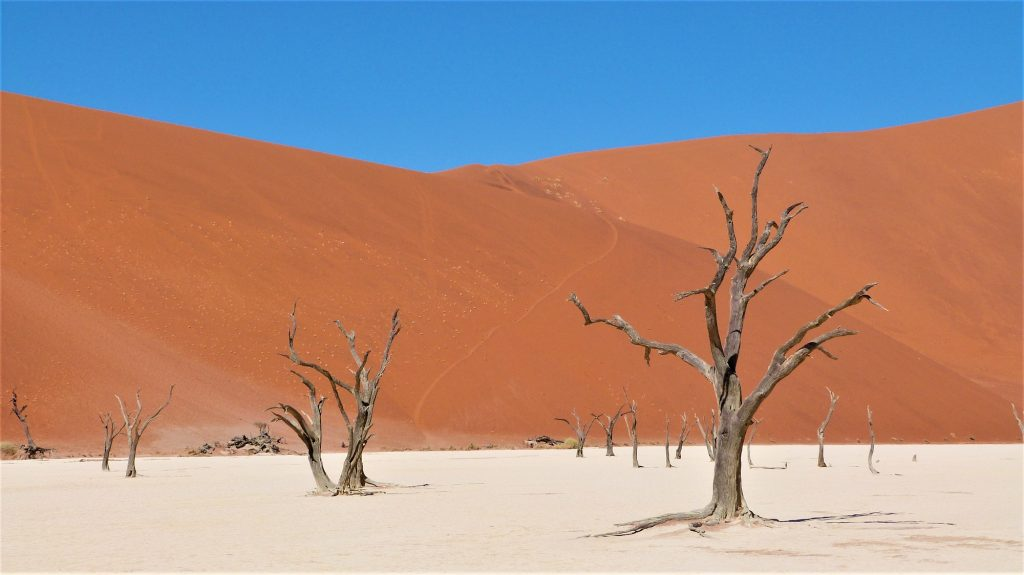 Deadvlei Big Daddy