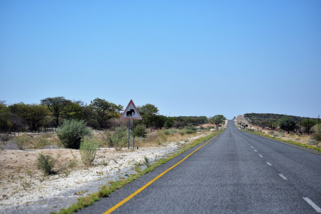 C38 Namibie Etosha