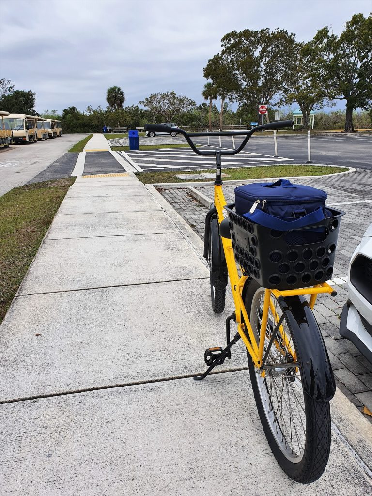 Vélos Everglades Shark Valley