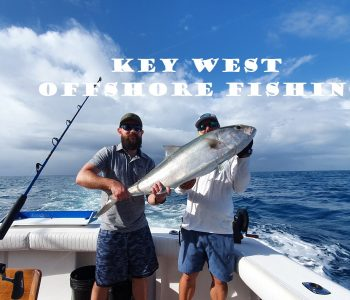 Pêche haute mer